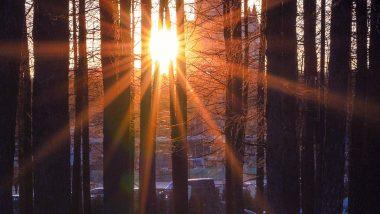 सूर्य के प्रकाश से बनाया जाएगा हाइड्रोजन ईंधन