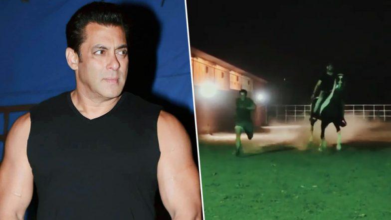 VIDEO : बॉलीवुड के दबंग सलमान खान ने घोड़े के साथ लगाई रेस, जानें किसे मिली जीत