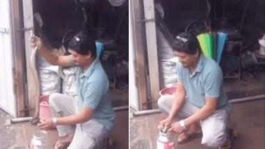 कमजोर दिलवाले इस वीडियो को न देखें: जहरीले कोबरा ने युवक को काटा, ICU में भर्ती