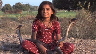VIDEO: जहरीले कोबरा हैं इस 8 साल की बच्ची काजोल के खास दोस्त, जानिए क्या यह है विष कन्या?