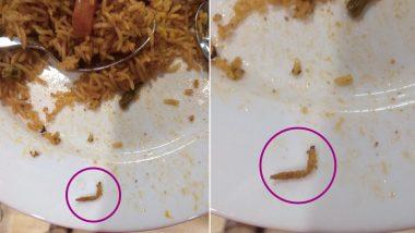 हैदराबाद: आइकिया स्टोर के रेस्टोरेंट में वेज बिरयानी में मिला कीड़ा, लगा इतना रुपये जुर्माना