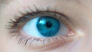 आंखों की रोशनी रहेगी लंबे समय तक सलामत, रोजाना करें ये 5 आसान काम