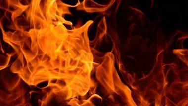 उत्तर प्रदेश: शराबी पति से विवाद के बाद महिला ने 4 बच्चों संग खुद को लगाई आग
