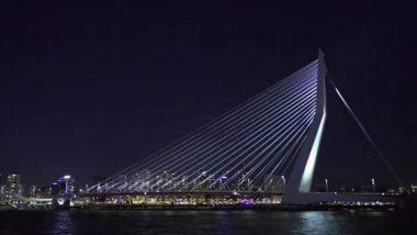 उद्घाटन से पहले सिग्नेचर ब्रिज को लेकर ट्रोल हुई केजरीवाल सरकार, नीदरलैंड के पुल की तस्वीर की पोस्ट, BJP ने कहा चोरी आप की फितरत