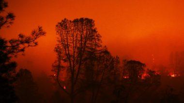 अमेरिका: कैलिफोर्निया में लगी भीषण आग से मृतकों की संख्या बढ़कर हुई 58, बचाव कार्य जारी