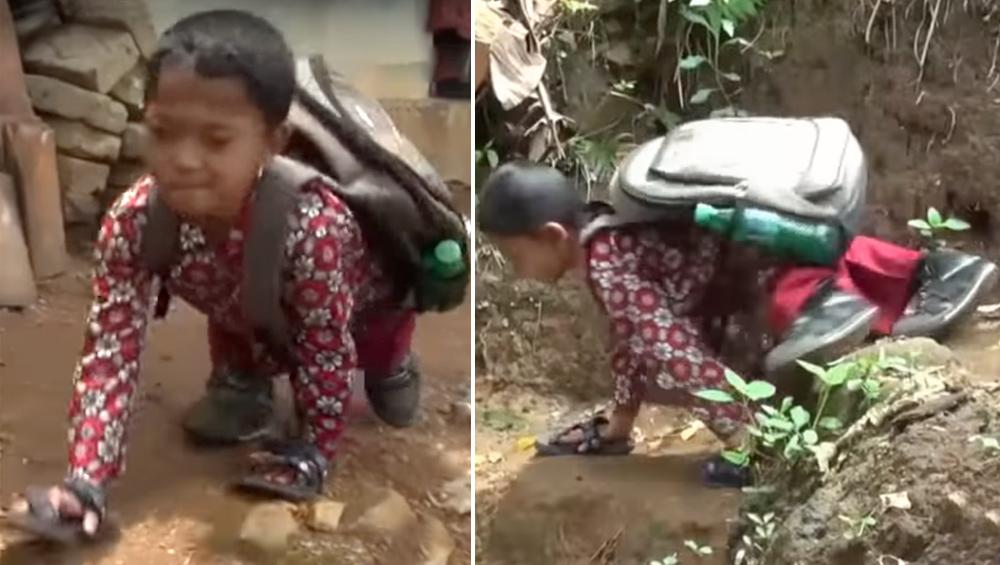 पढ़ने का जूनून: हाथ के सहारे 3 km चलकर रोज जाता है स्कूल, राष्ट्रपति ने भी जज्बे को किया सलाम, देखें Video