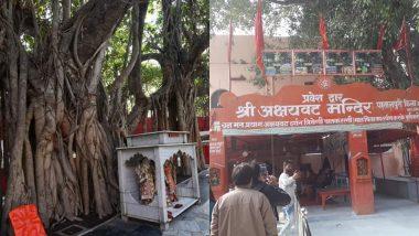 कुंभ मेला 2019: विश्व का सबसे प्राचीन वटवृक्ष है 'अक्षयवट', जहां वनवास काल के दौरान भगवान राम ने 3 दिनों तक किया था निवास
