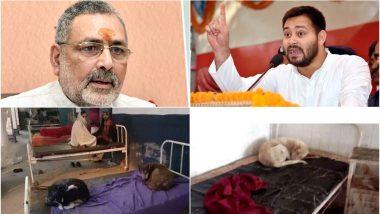 बिहार: गिरिराज सिंह के क्षेत्र में अस्पताल के बेड पर सो रहे थे कुत्ते, तेजस्वी बोले- पाकिस्तान भेजने में मस्त हैं केंद्रीय मंत्री