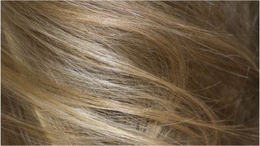 चीनी म्यांमार के रास्ते कर रहे हैं भारतीय मानव बालों की तस्करी, इंडियन ट्रेडर्स ने डीआरआई को किया अलर्ट