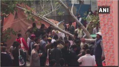 जयपुर लिटरेचर फेस्टिवल के पहले दिन हुआ हादसा, पेड़ गिरने से चार लोग घायल