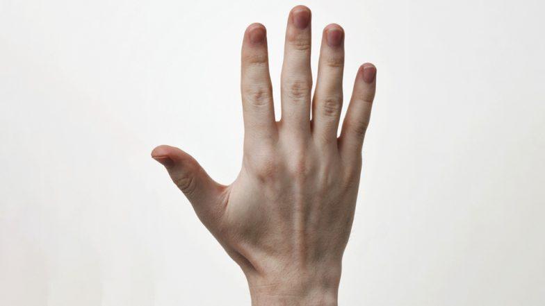 वैज्ञानिक करेंगे इस तकनीक का इजात, हाथ की तस्वीर से पकड़े जाएंगे बड़े- बड़े अपराधी