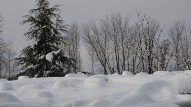 कश्मीर की घाटी में तीव्र शीत लहर जारी, तापमान जीरो बिंदू से नीचे दर्ज