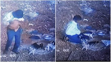शर्मनाक! चेन्नई में एक शख्स ने पिल्लों का बनाया अपनी हवस का शिकार