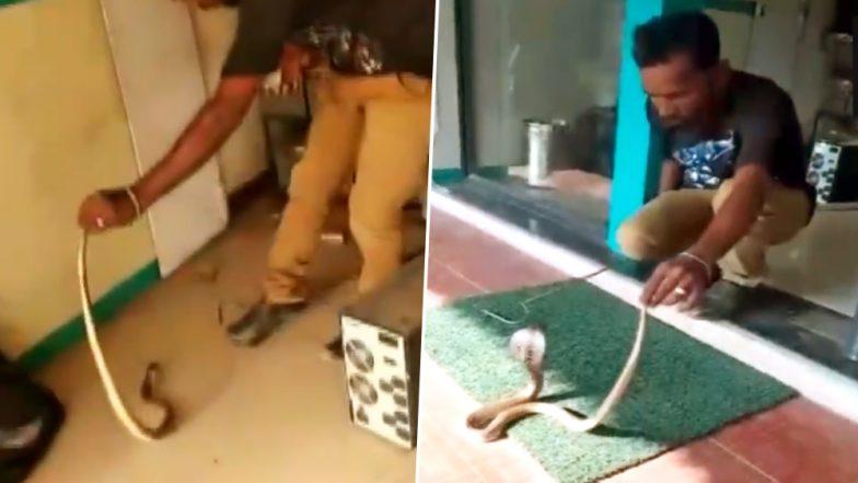 तमिलनाडु: कोयंबटूर में एटीएम के अंदर मिला सांप, इस तरह निकाला गया बाहर, देखें Video