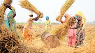 महाराष्ट्र: काम प्रभावित न हो इसलिए इस गांव की महिलाएं निकलवा देती हैं अपना गर्भाशय, पीरियड्स में छुट्टी लेने पर लगता है जुर्माना