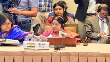 विदेश मंत्री सुषमा स्वराज ने SCO की बैठक में पुलवामा आतंकी हमले का किया जिक्र