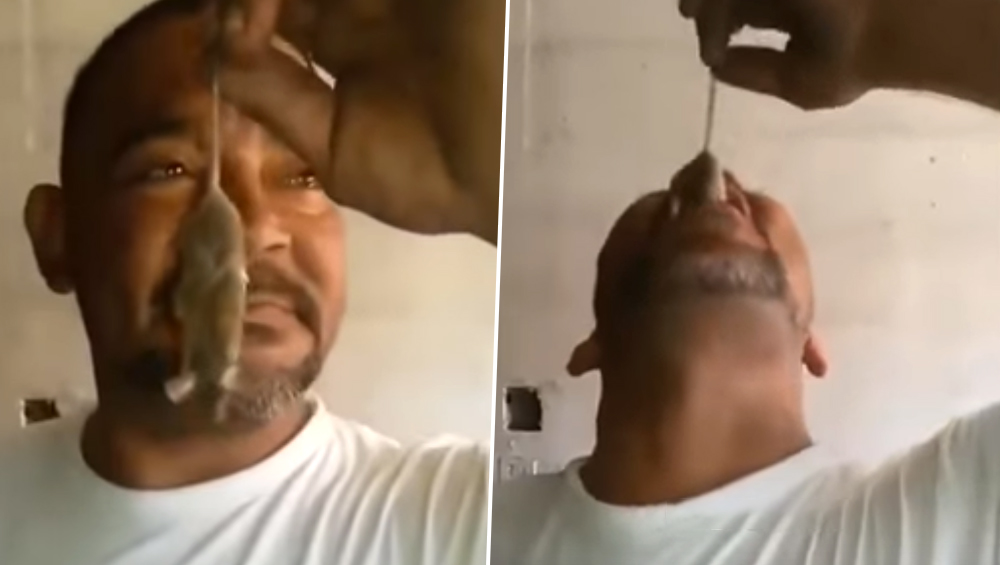 एक बियर बोतल और हाथ में चूहा, इस शख्स ने जो किया उसे देख सिर पीट लेंगे आप: देखें  VIDEO