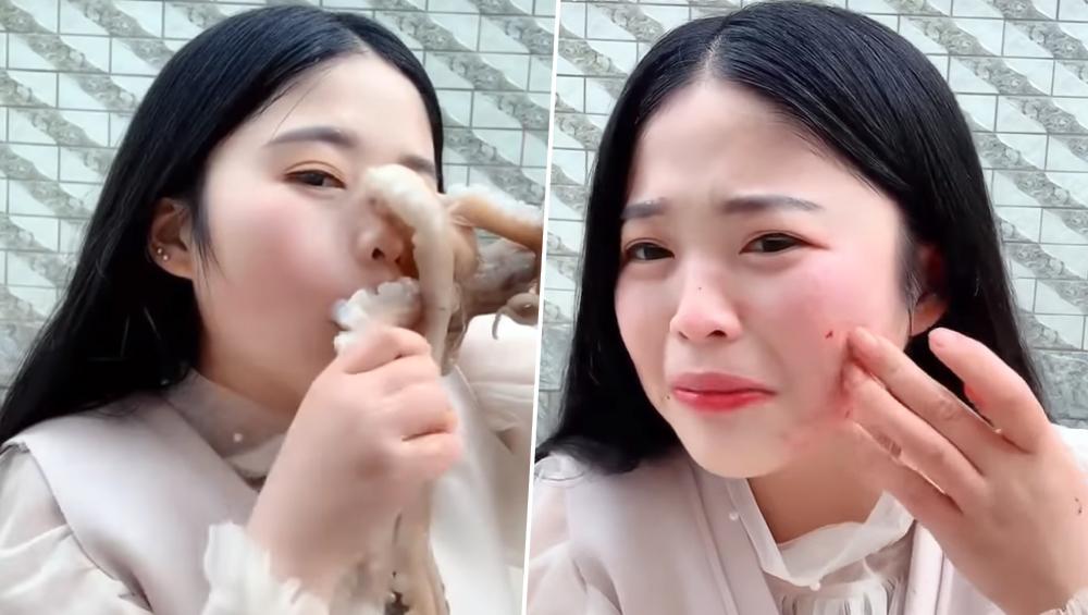 यूट्यूब ब्लॉगर ने लाइव स्ट्रीमिंग के दौरान की ऑक्टोपस खाने की कोशिश, आगे जो हुआ देखकर आप रह जाएंगे दंग