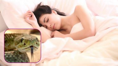 Snakes in Dreams: Is a Snake in a Dream auspicious or inauspicious?  Know what is the meaning of such dreams