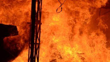 मेक्सिको में ट्रक और बस के बीच जबर्दस्त टक्कर होने के कारण लगी भीषण आग, हादसे में 21 लोगों की मौत 30 घायल