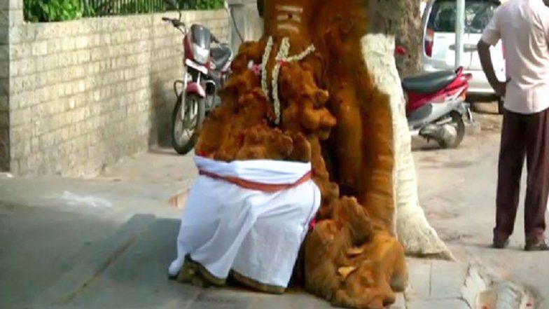 तमिलनाडु: गुलमोहर के पेड़ में उभरी भगवान गणेश की आकृति, लोग कर रहे हैं पूजा