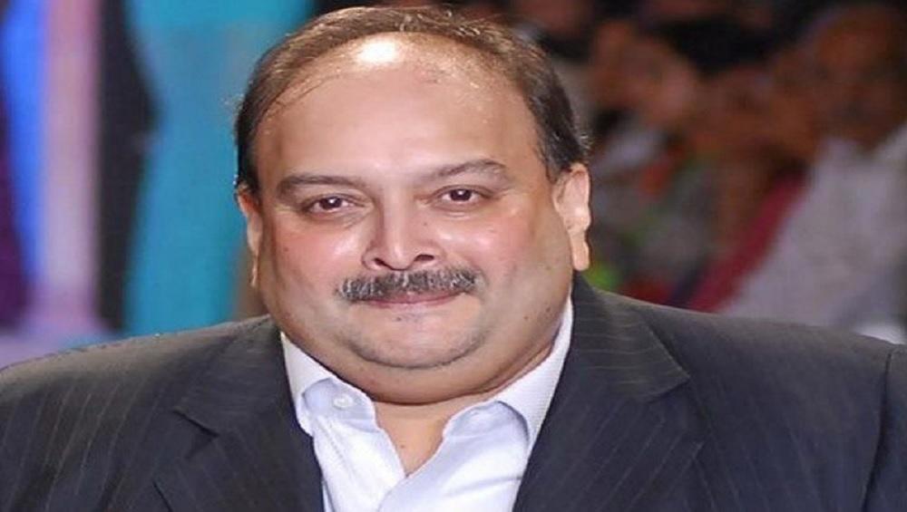 PNB घोटाला: मेहुल चोकसी पर ED की बड़ी कार्रवाई, जब्त की 24 करोड़ की संपत्ति