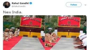 राहुल गांधी ने योग को लेकर किया ट्वीट, बीजेपी नेताओं ने साधा निशाना