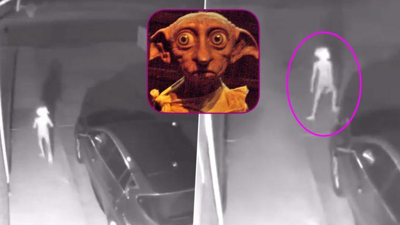 घर के CCTV में दिखा हैरान कर देने वाला अजीब प्राणी, जो देखा बस देखता रह गया...देखें वीडियो