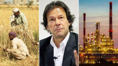 इमरान खान का नया पाकिस्तान बनाने का दावा निकला फिसड्डी, कृषि से लेकर कारोबार तक फेल हो गया सब प्लान