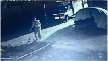 गुजरात: अमरेली के गौशाला में घुसा शेर, गायों की जान बचाने के लिए भिड़ गया ये शख्स, देखें Video