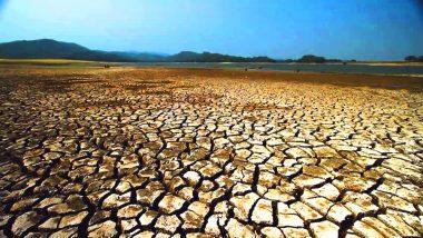 केंद्र सरकार ने झारखंड के दस जिलों को घोषित किया सूखाग्रस्त, 12 लाख किसानों को मिलेगी राहत