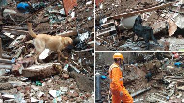 मुंबई डोंगरी हादसा: अबतक 14 लोगों की मौत, सर्च ऑपरेशन में NDRF ले रही है स्निफर डॉग्स की मदद