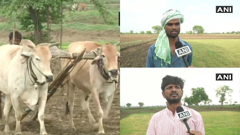 महाराष्ट्र: पूर्वी विदर्भ के किसानों पर पड़ी सूखे की मार, मानसून की बेरूखी ने बढ़ाई धान उत्पादकों की परेशानी