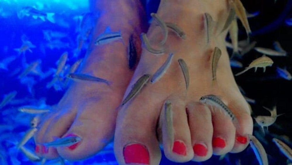महिला को फिश पेडिक्योर करवाना पड़ गया महंगा, कटवानी पड़ी पैरों की उंगलियां
