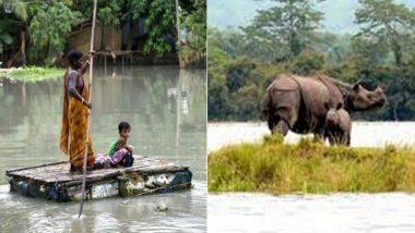 असम में बाढ़ का कहर जारी, मरने वालों की संख्या हुई 68, दो जिलों में फिर घुसा पानी