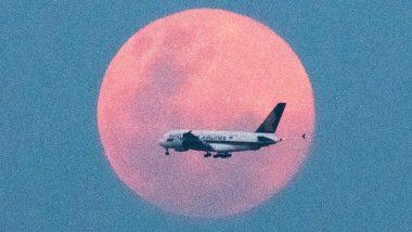 तुर्की: रनवे पर फिसले विमान के हुए तीन टुकड़े हुए, 120 लोग घायल