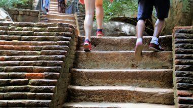 लिफ्ट की जगह करें सीढ़ियों का इस्तेमाल, इससे मानसिक और शारीरिक स्वास्थ्य को होते हैं ये गजब के फायदे