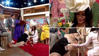 ब्रिटेन: 49 वर्षीय मॉडल ने टीवी पर लाइव अपने पालतू कुत्ते से की शादी, देखें वायरल वीडियो