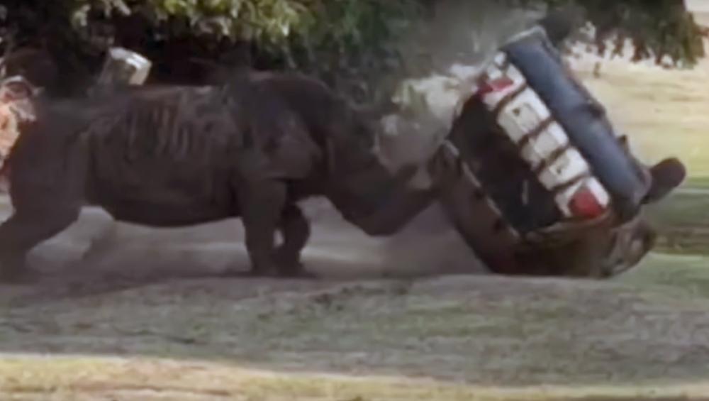 जर्मन सफारी पार्क में गुस्साए गैंडे ने कार को किया चकनाचूर,  देखें वायरल वीडियो