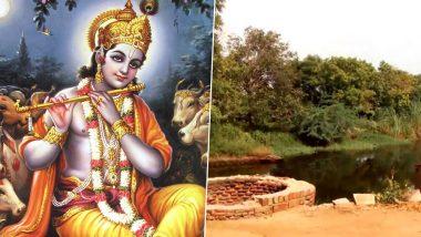 ब्रज में श्री कृष्ण ने उगाए थे मोती के पेड़, बरसाना और नंदगांव के बीच है मोती कुंड, आज भी मौजूद हैं ये पेड़
