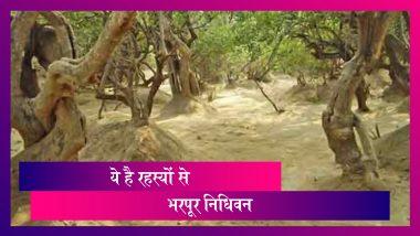 Vrindavan's Mysterious Place:  रहस्यों से भरपूर है वृंदावन की ये जगह