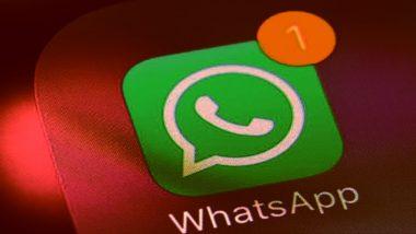 नववर्ष की पूर्वसंध्या पर भारतीयों ने व्हाट्सएप पर भेजे 20 अरब मैसेज