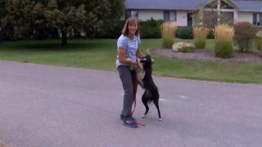 खोए हुए पालतू कुत्ते को ढूंढने के लिए महिला ने छोड़ी नौकरी, खोजने के बाद 57वें दिन मिला, देखें तस्वीरें