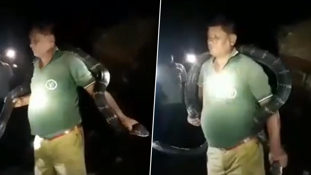 Watch Video: पश्चिम बंगाल में फॉरेस्ट गार्ड ने किंग कोबरा को गले में डालकर बनाया वीडियो, प्रशासन ने दिए जांच के आदेश