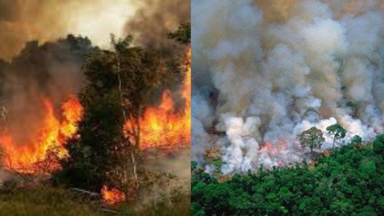 यूरोपीय अंतरिक्ष एजेंसी ने किया जांच, कहा- अमेजन के जंगलों में वायु प्रदूषण काफी हद तक बढ़ा