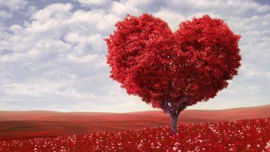 World Heart Day 2019: दिल की फिटनेस बेहद जरुरी, आयुर्वेद से हार्ट की बिमारियों को रखें दूर