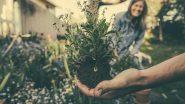 औषधीय पौधों का बगीचा बनाने के लिए मोदी ने ओडिशा के पटायत साहू की प्रशंसा की
