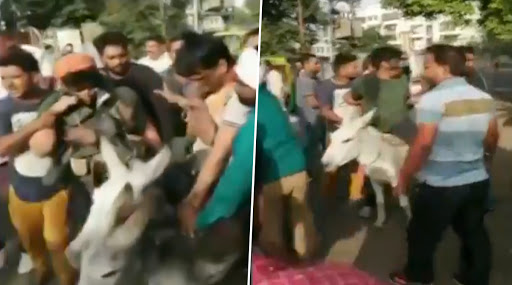 राजस्थान: बीएसपी नेता रामजी गौतम को कार्यकताओं ने जूते की माला पहनाकर गधे पर घुमाया, मुंह पर पोती कालिख