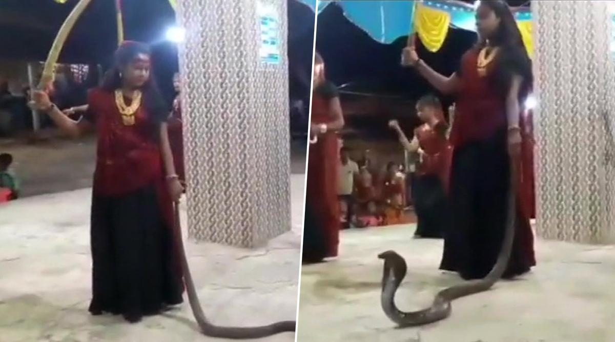 गुजरात: हाथ में सांप लेकर गरबा करना पड़ा महंगा, दो महिलाएं और एक युवती गिरफ्तार