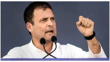 हरियाणा विधानसभा चुनाव 2019: कांग्रेस नेता राहुल गांधी 14 अक्टूबर से शुरू करेंगे चुनाव प्रचार
